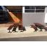 London Bench  - Splay Leg (Black) - Merbau Hardwood